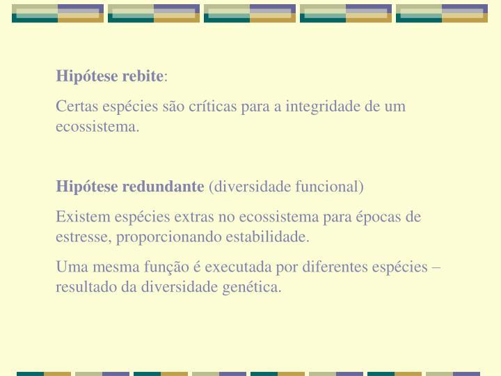 Hipótese rebite