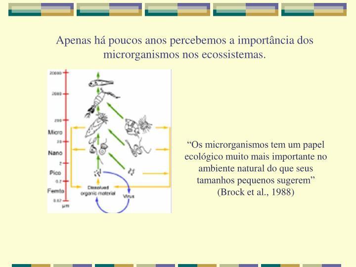 Apenas há poucos anos percebemos a importância dos microrganismos nos ecossistemas.