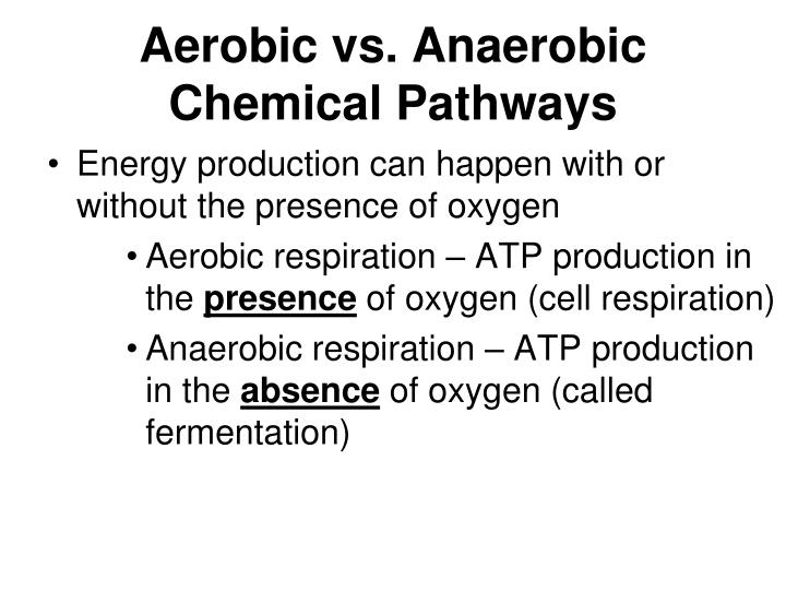 Aerobic vs. Anaerobic Chemical Pathways