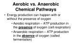 aerobic vs anaerobic chemical pathways
