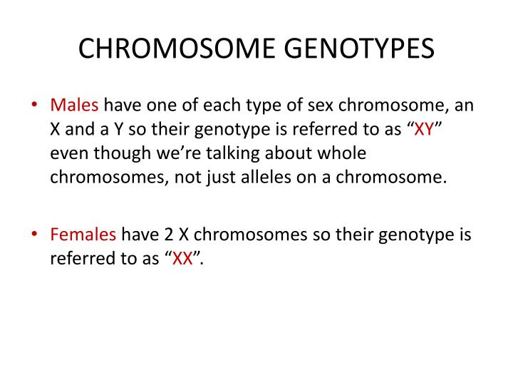 CHROMOSOME GENOTYPES
