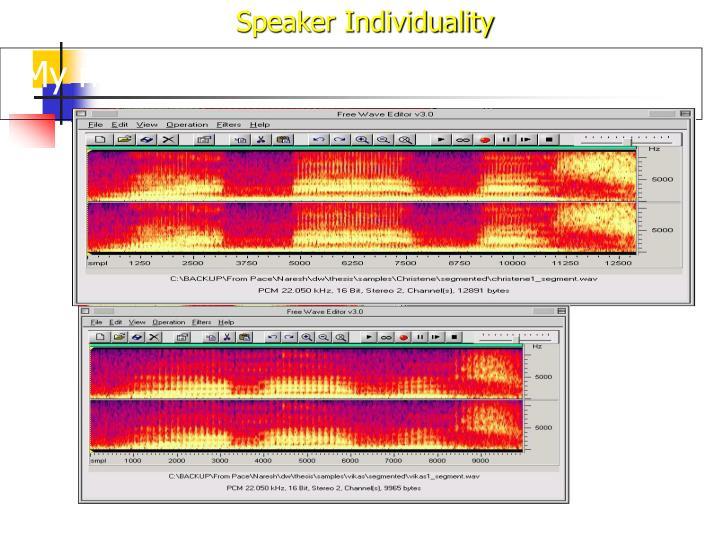 Speaker Individuality
