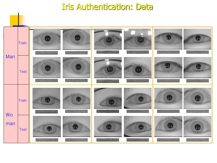 Iris Authentication: Data