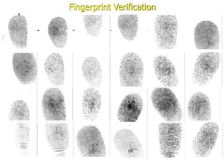 Fingerprint Verification