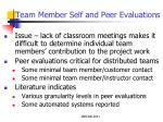 team member self and peer evaluations