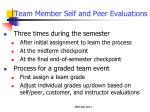 team member self and peer evaluations1