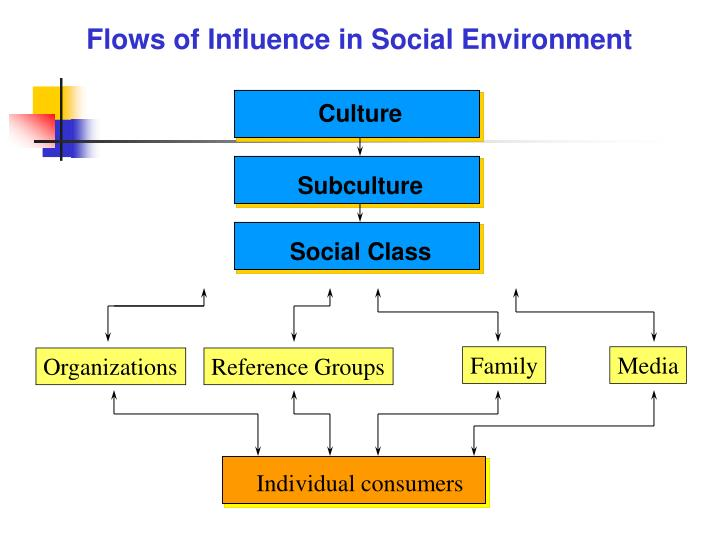 Flows of Influence in Social Environment