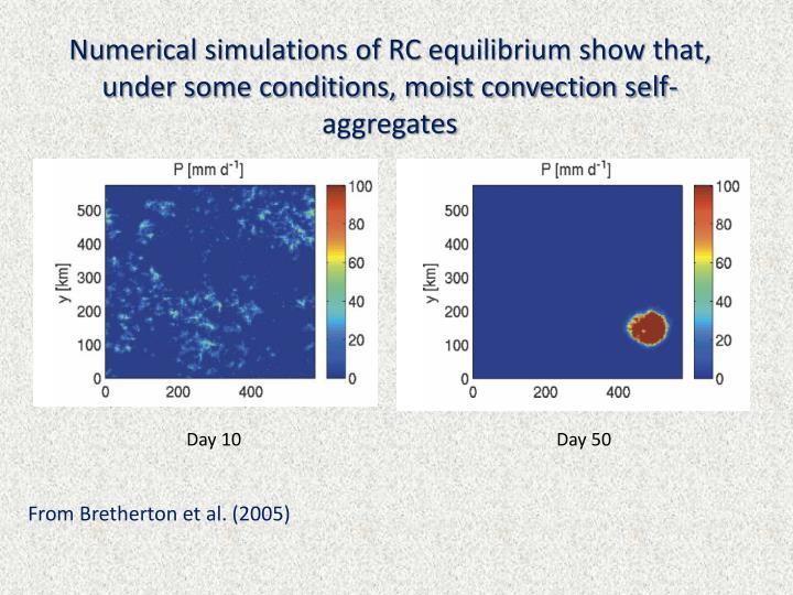 Numerical simulations of RC equilibrium show that, under some conditions, moist convection self-aggr...