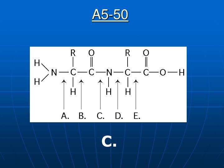 A5-50
