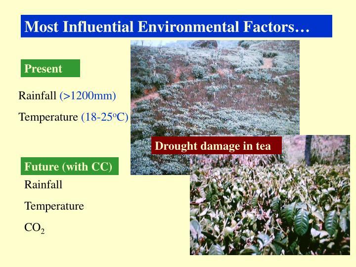 Most Influential Environmental Factors…
