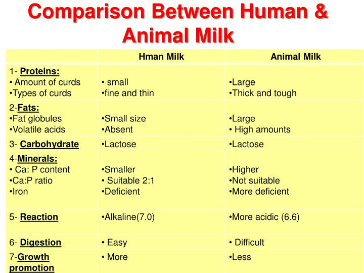 a comparison of the similarities of humans and animals The similarity of human and animal models most scientists who incorporate animals in their research do so under the strong belief that modern animals.