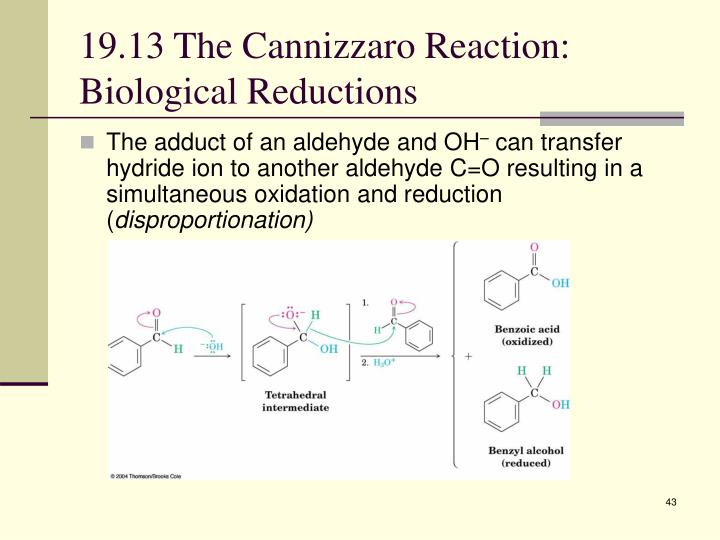 19.13 The Cannizzaro Reaction: Biological Reductions