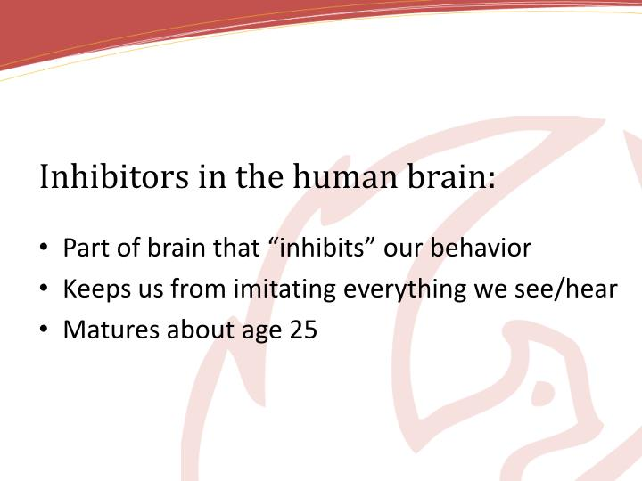 Inhibitors in the human brain: