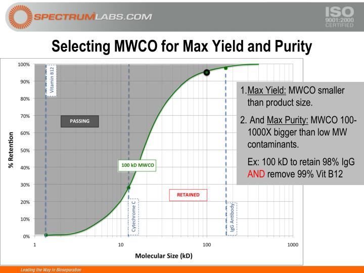 Selecting MWCO for Max Yield and Purity