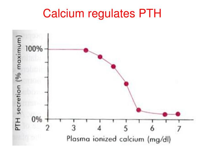 Calcium regulates PTH