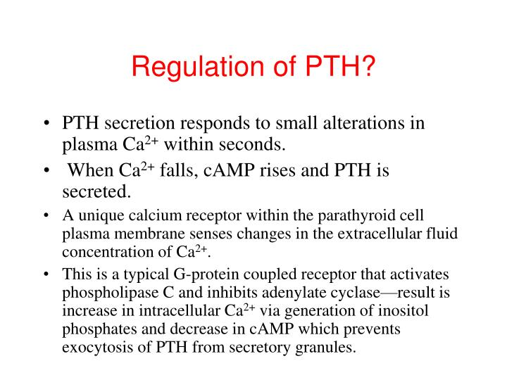 Regulation of PTH?