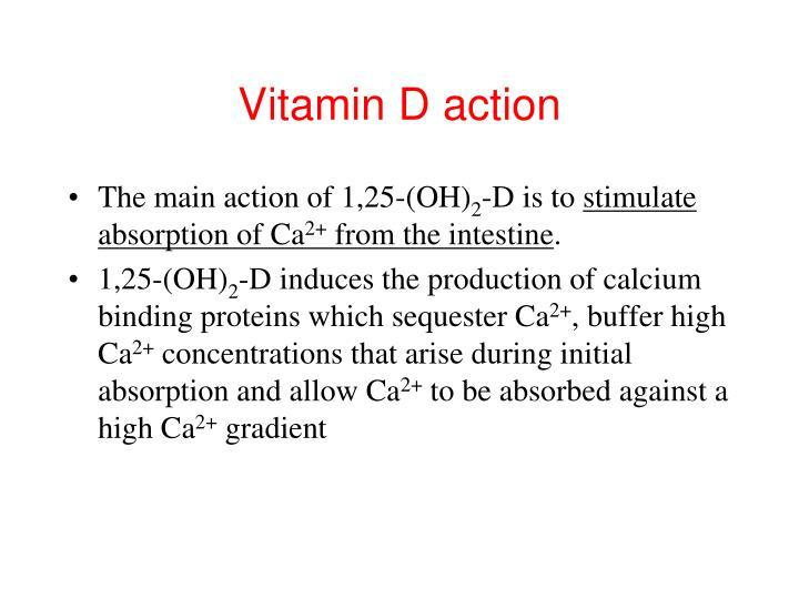 Vitamin D action
