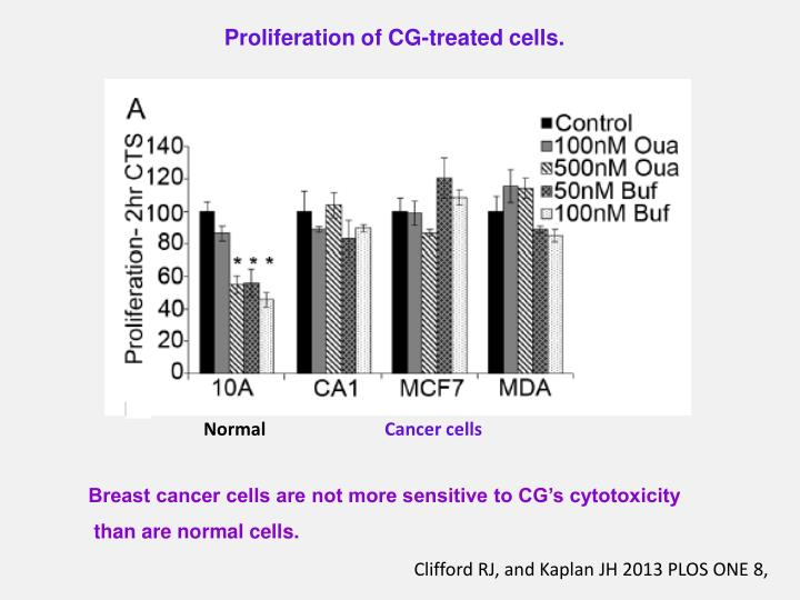Proliferation of CG-treated cells.