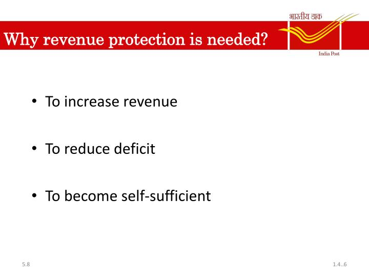 Why revenue protection is needed?