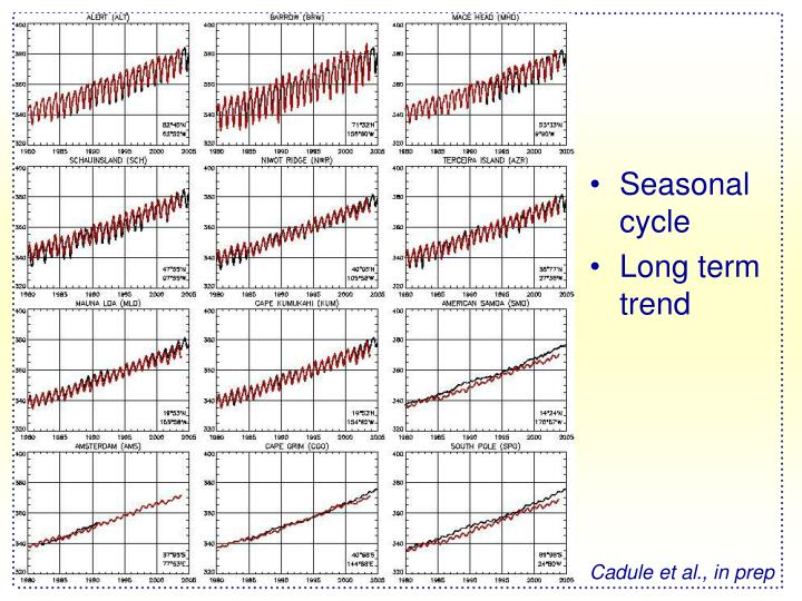 Seasonal cycle