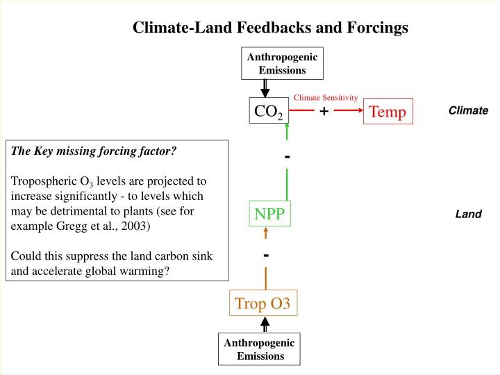 Climate-Land Feedbacks and Forcings
