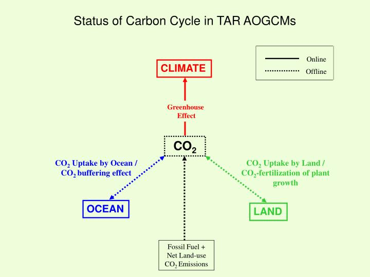 Status of Carbon Cycle in TAR AOGCMs