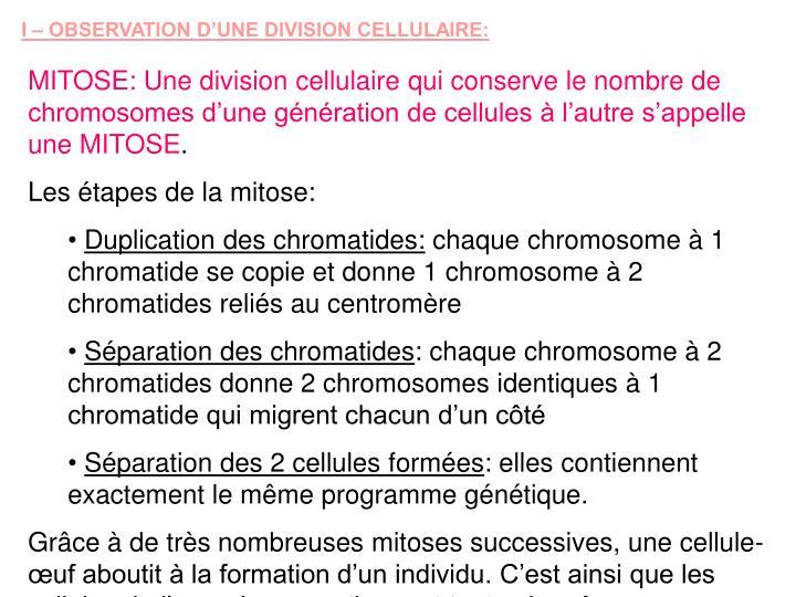 I – OBSERVATION D'UNE DIVISION CELLULAIRE: