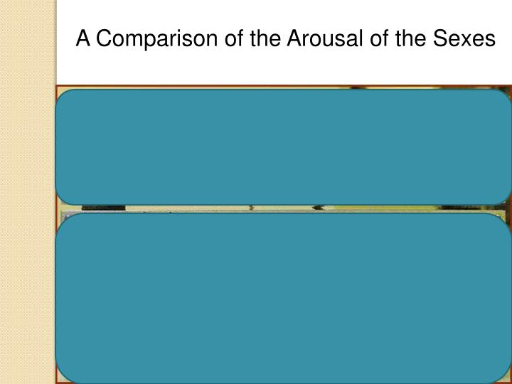 A Comparison of the Arousal of the Sexes