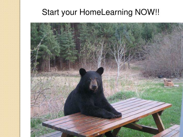 Start your HomeLearning NOW!!