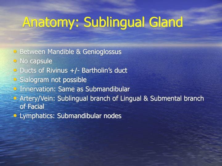 Anatomy: Sublingual Gland