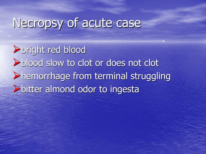 Necropsy of acute case