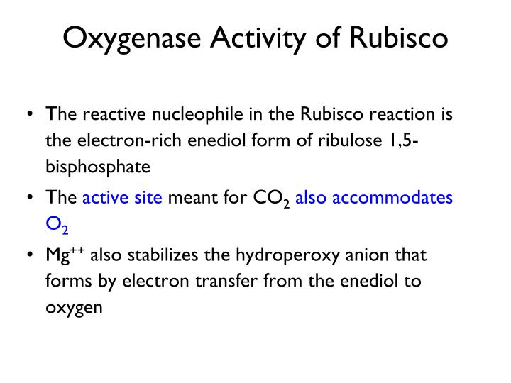 Oxygenase Activity of Rubisco