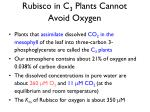 rubisco in c 3 plants cannot avoid oxygen