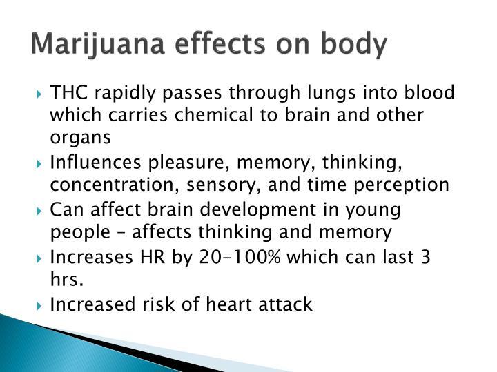 Marijuana effects on body