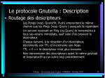 le protocole gnutella description10