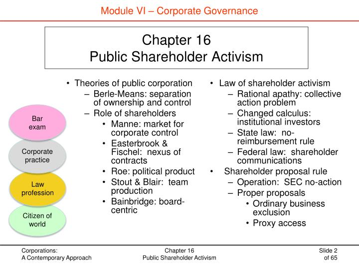 Module VI – Corporate Governance