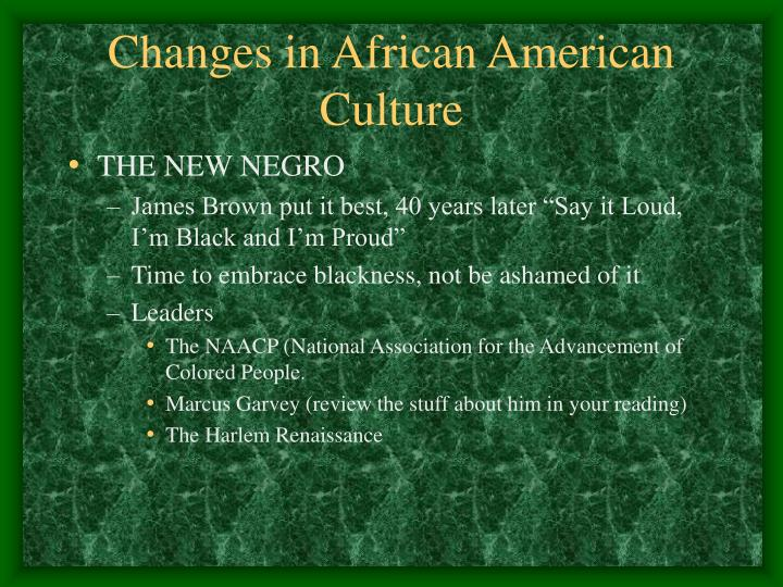 Changes in African American Culture