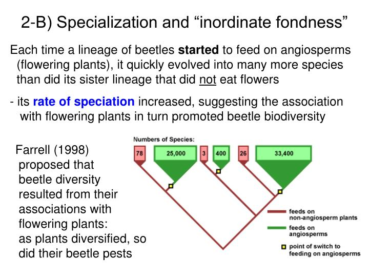 "2-B) Specialization and ""inordinate fondness"""