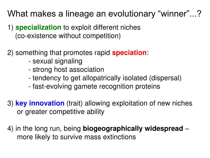 "What makes a lineage an evolutionary ""winner""...?"