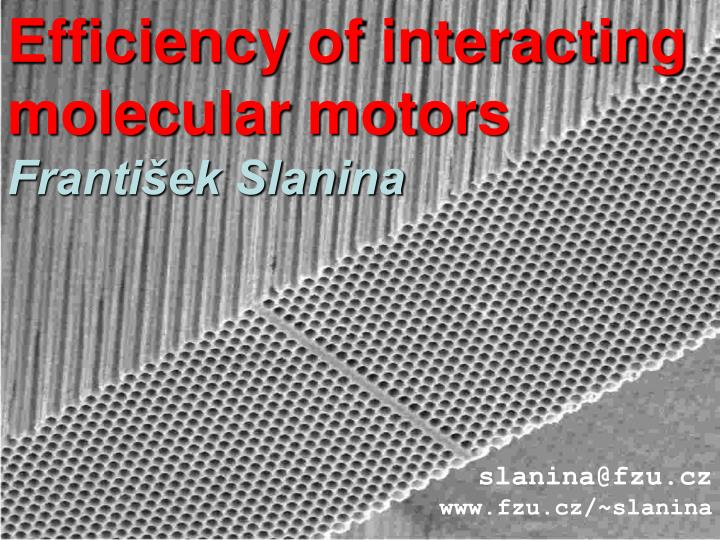 Efficiency of interacting molecular motors