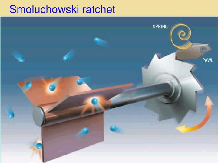 Smoluchows