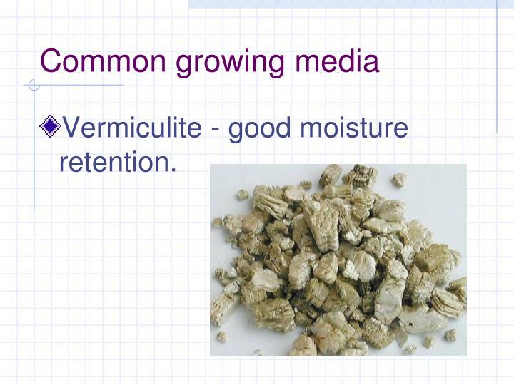 Common growing media