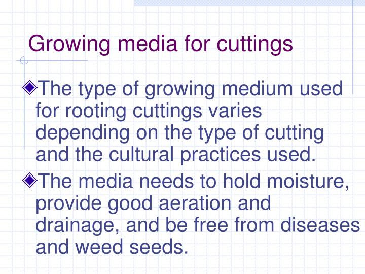 Growing media for cuttings