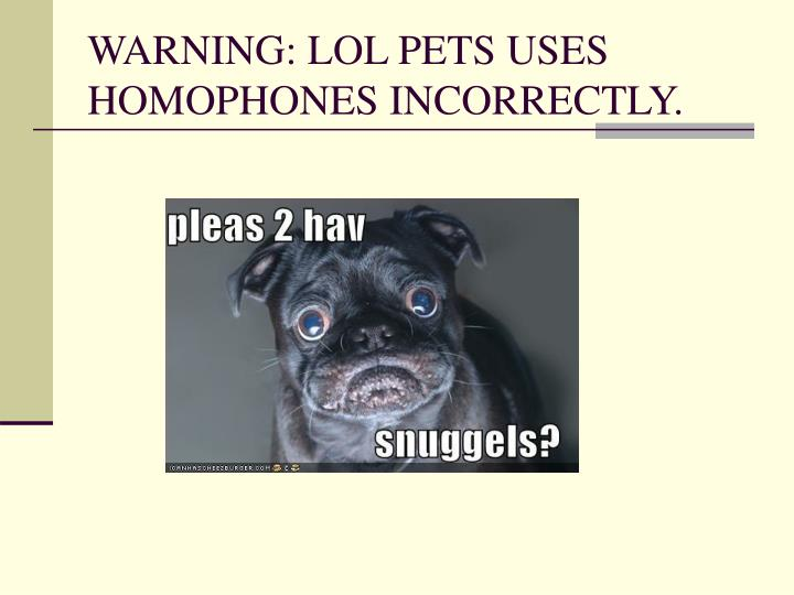 WARNING: LOL PETS USES HOMOPHONES INCORRECTLY.
