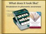 what does it look like breakdown in phonemic awareness