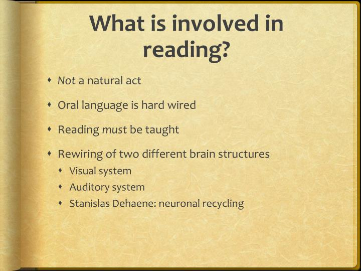 What is involved in reading?