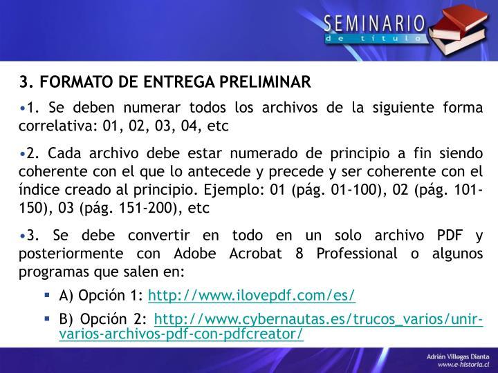 3. FORMATO DE ENTREGA PRELIMINAR