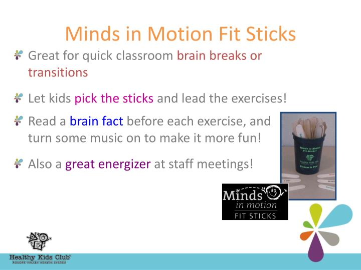 Minds in Motion Fit Sticks