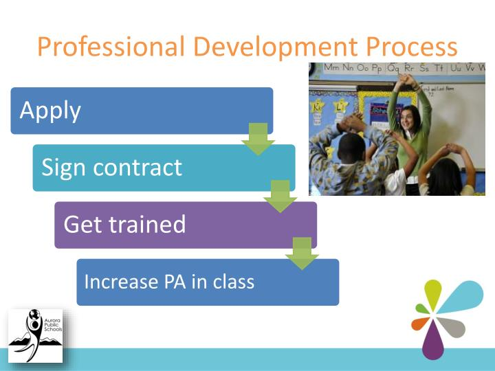 Professional Development Process