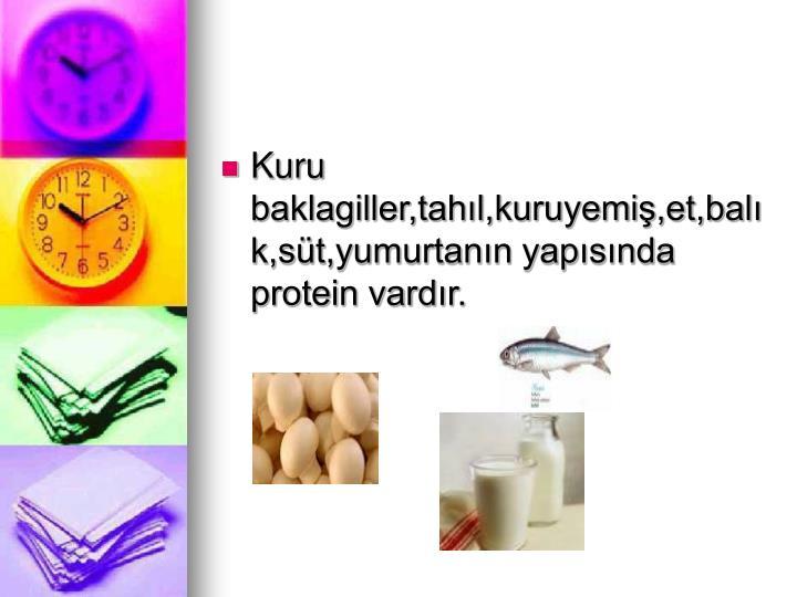 Kuru baklagiller,tahıl,kuruyemiş,et,balık,süt,yumurtanın yapısında protein vardır.